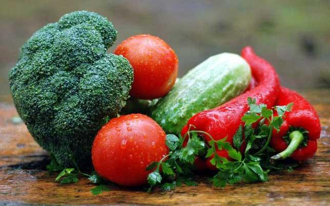 plant rich diet